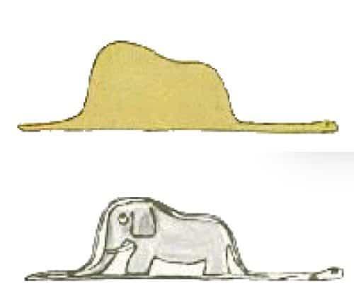boaelephant