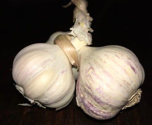 garlic from the Panajachel market