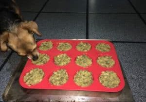 Amitu with her vegan dog food
